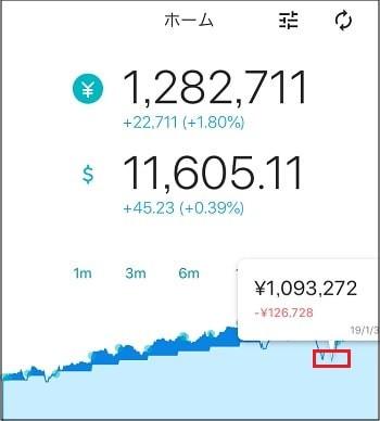 ウェルスナビアプリ - 損益グラフの見方(損失)
